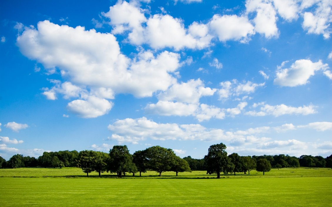 Download Wallpaper Beautiful summer day in the park - HD wallpaper