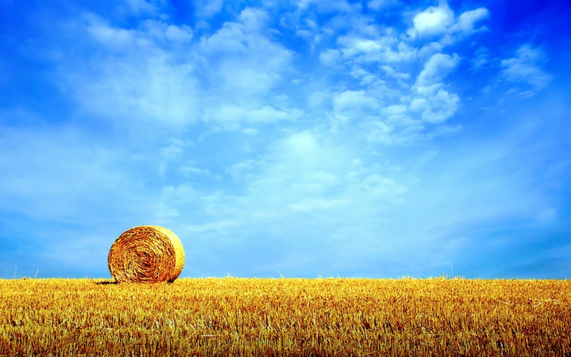 Download Wallpaper Golden wheat field - summer HD wallpaper