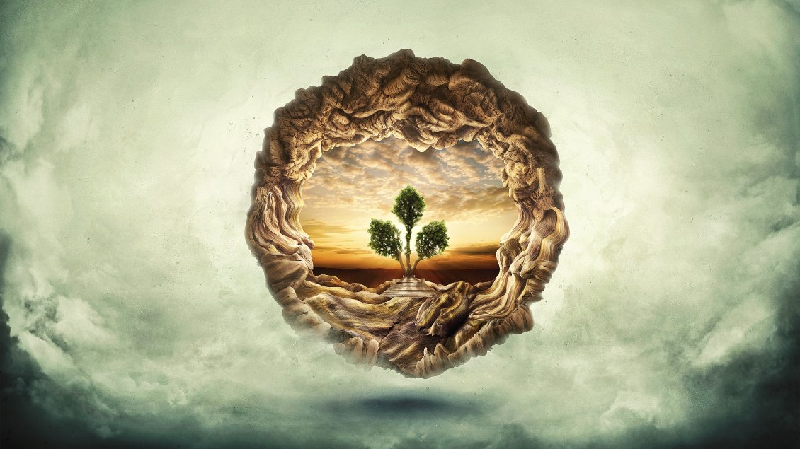 Tree Of Life Hd