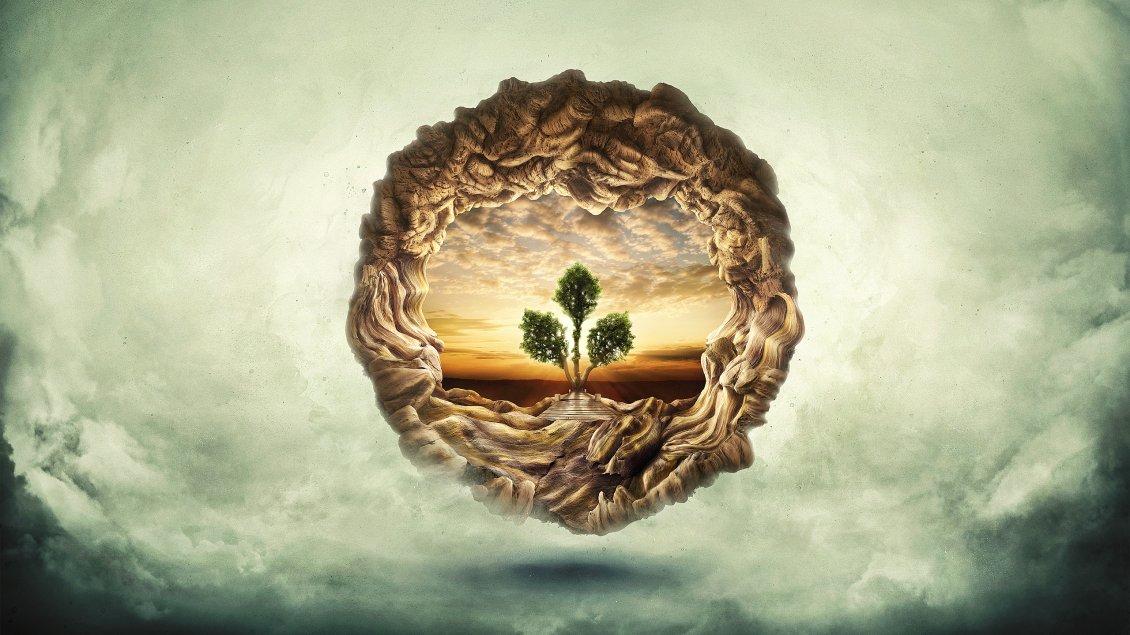 Tree of Life HD