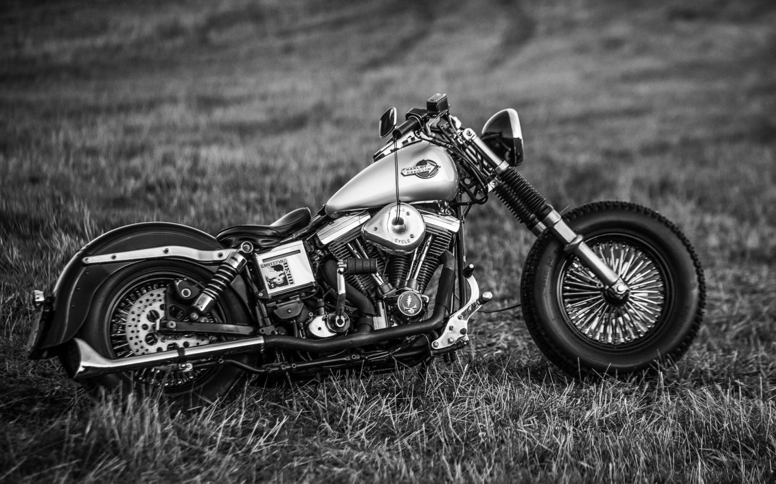 Cool Wallpaper High Resolution Harley Davidson - 8270_Black-and-White-Harley-Davidson-Motorcycle  Image_59871.jpg