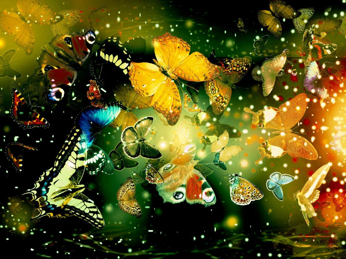 Download Wallpaper Rain of butterflies - magic time