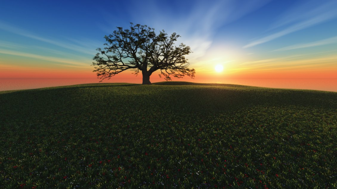 Download Wallpaper Awesome sunset, one tree on the hill