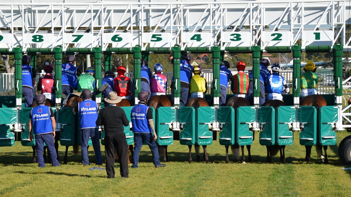 Download Wallpaper Horses ready for start, horses racing