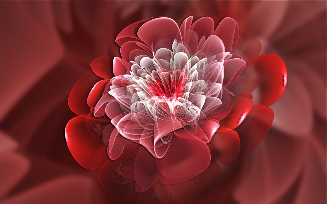 Download Wallpaper Red and white fractal shaped flower