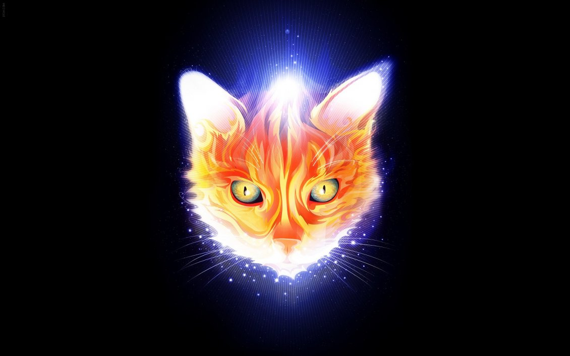 Download Wallpaper Abstract head cat in flames
