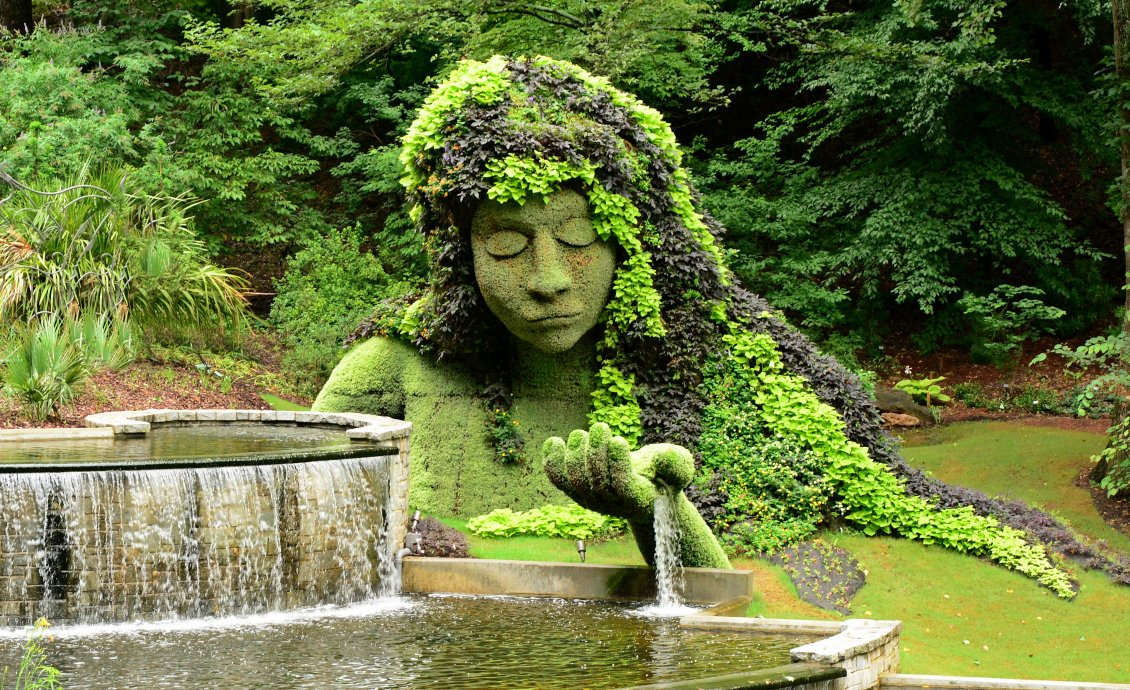 Botanical Garden Kolkata From India