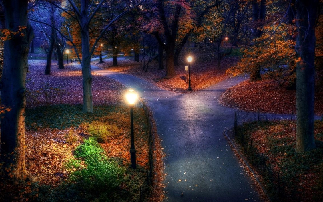 Download Wallpaper Three paths in the park - night landscape