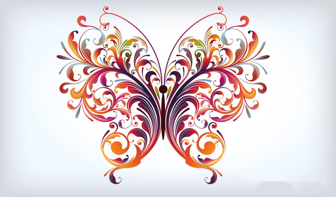A beautiful graphic design Butterfly wallpaper
