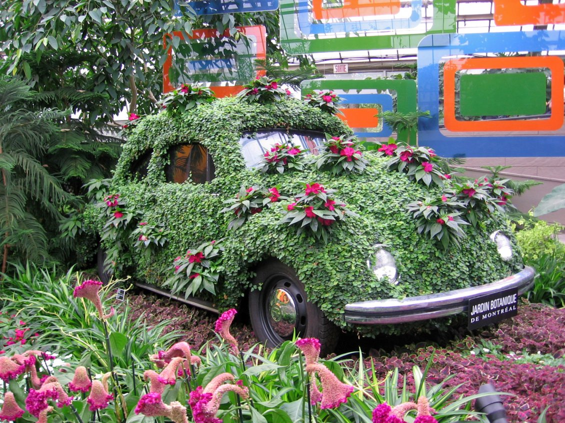 Green And Pink Car In The Botanical Garden
