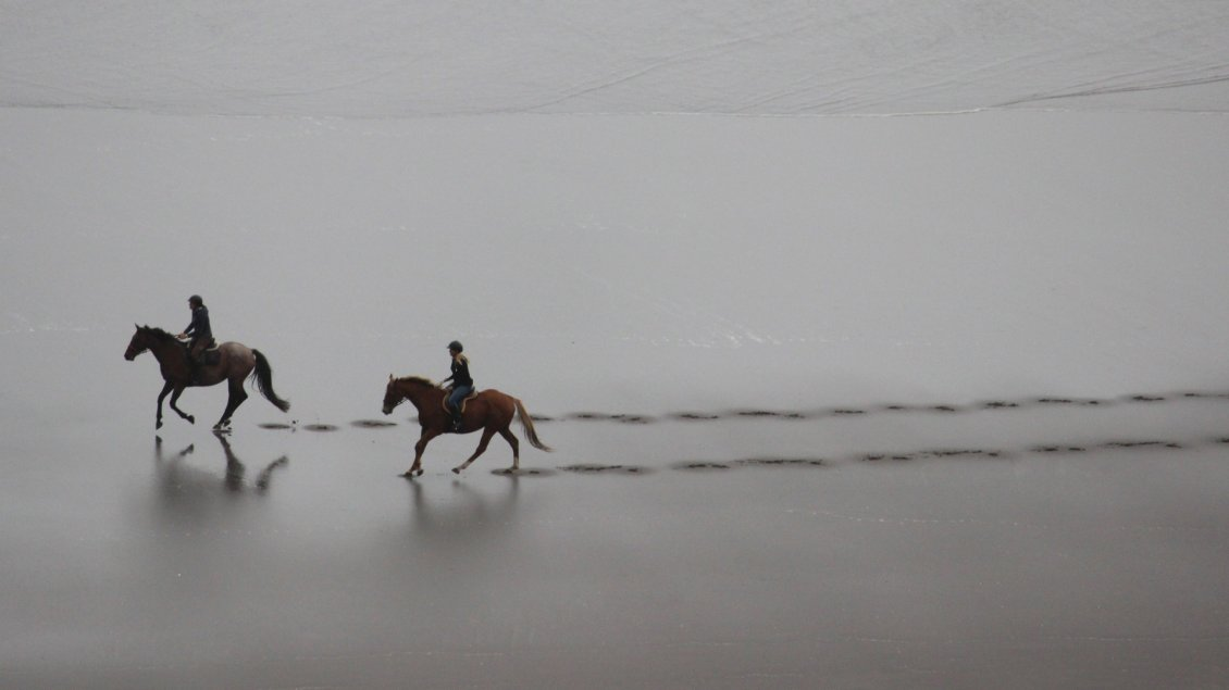 Download Wallpaper Two riders walking on beach - Footprints in the sand