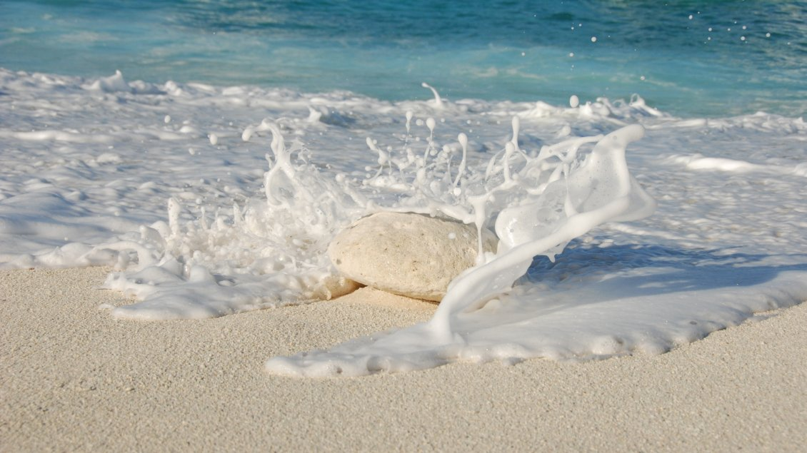 Download Wallpaper A big white stone in the sand of the beach
