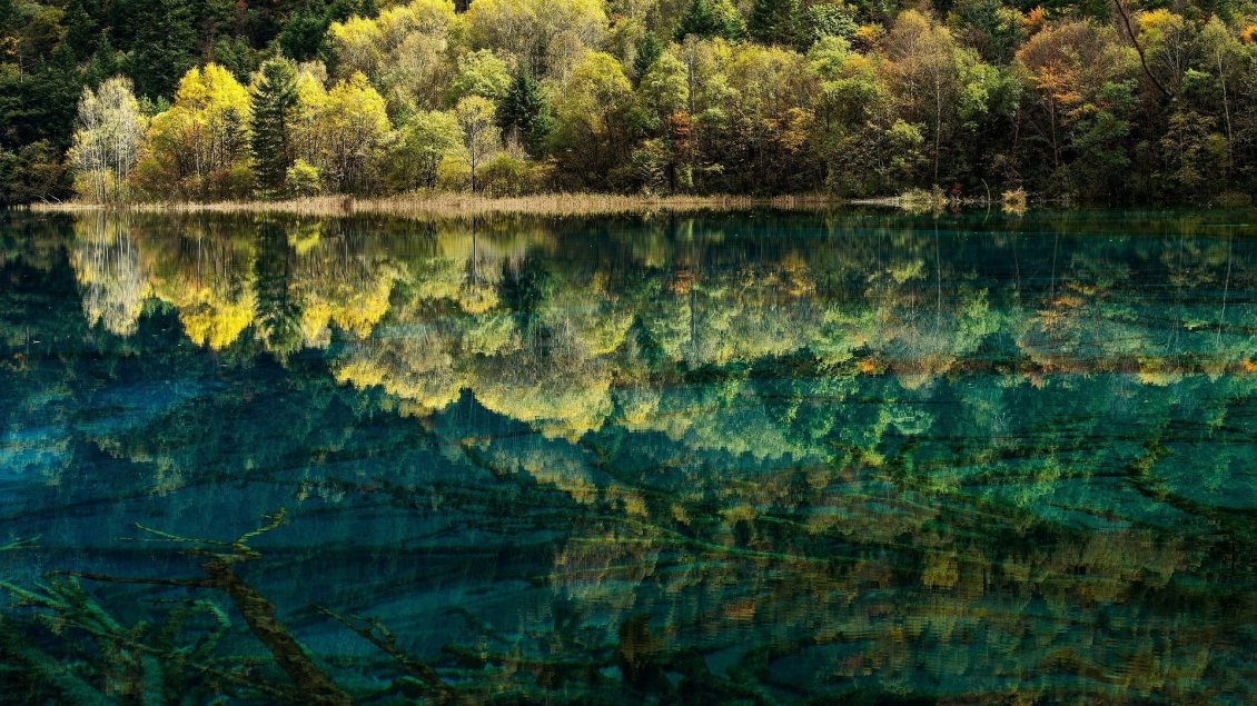 Download Wallpaper Amazing and spectacular reflection of nature in water