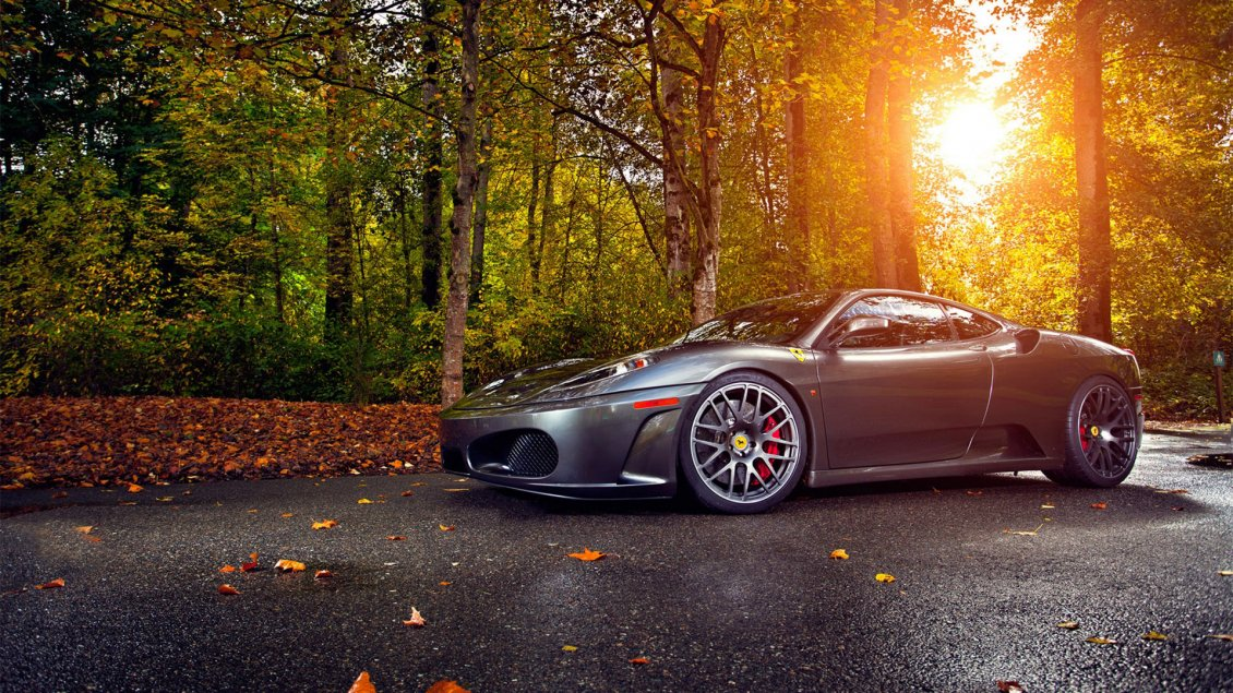 Download Wallpaper Gorgeous gray Ferrari on road in the forest