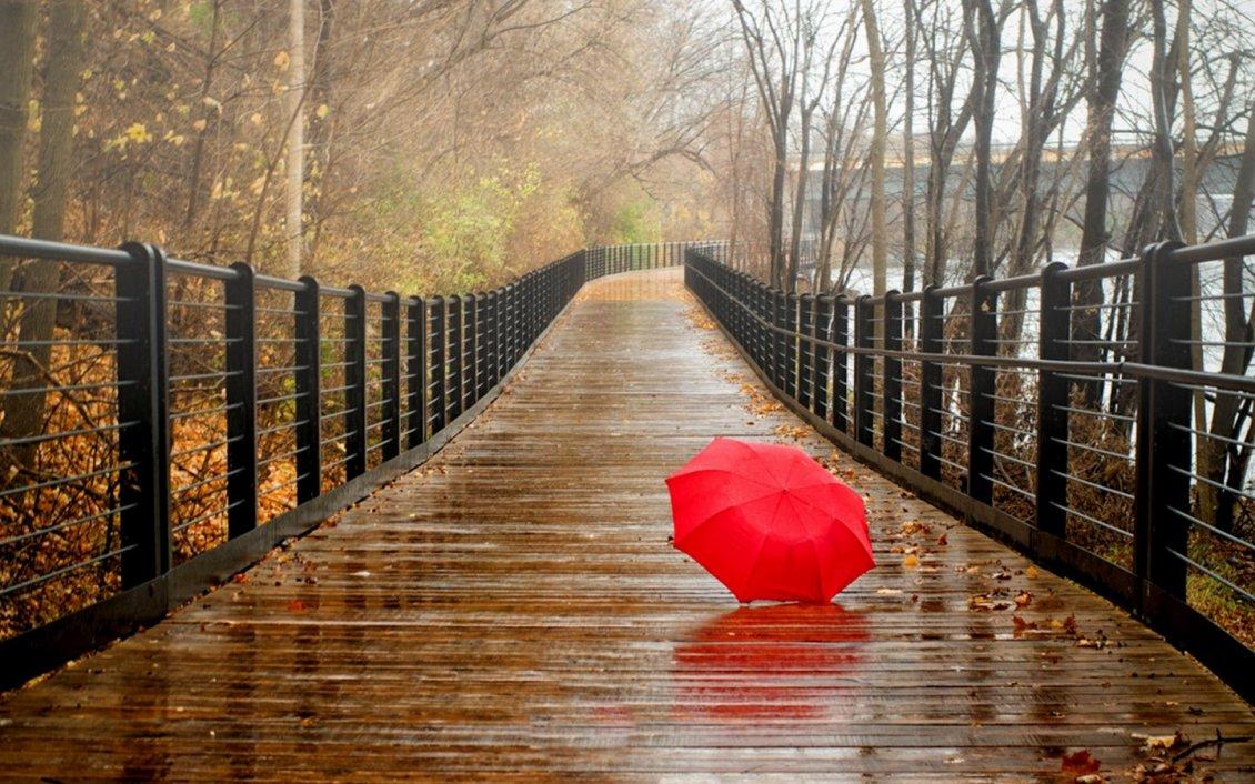 Red Umbrella On The Bridge