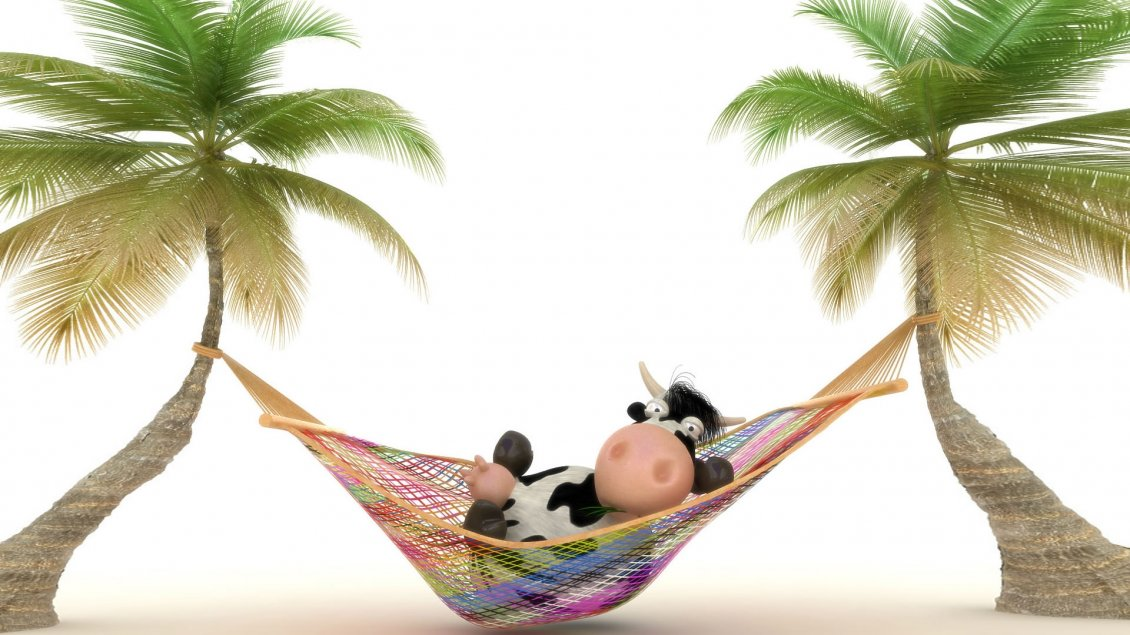 a cow relaxing in a colorful hammock  rh   superiorwallpapers