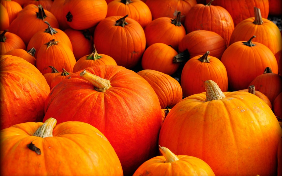 Top Wallpaper Halloween Gold - 11221_Orange-pumpkins-Halloween-is-here  Snapshot_956387.jpg
