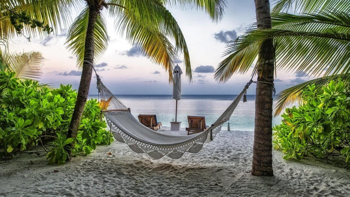 Download Wallpaper Relaxing corner on the beach between palms
