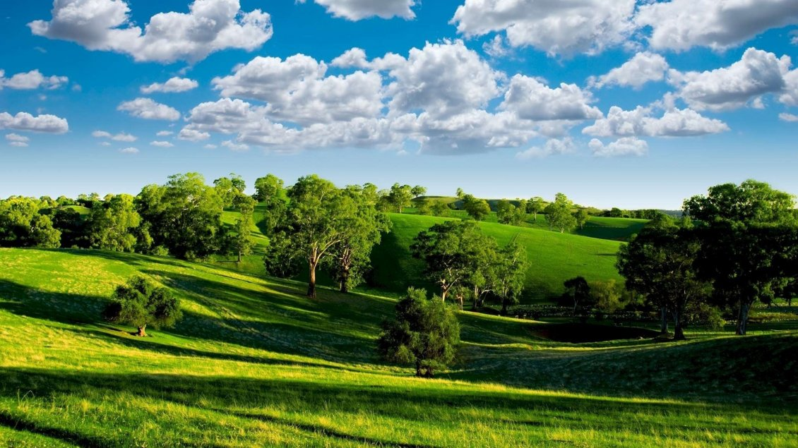 Download Wallpaper Beautiful sunny day of summer - nature landscape