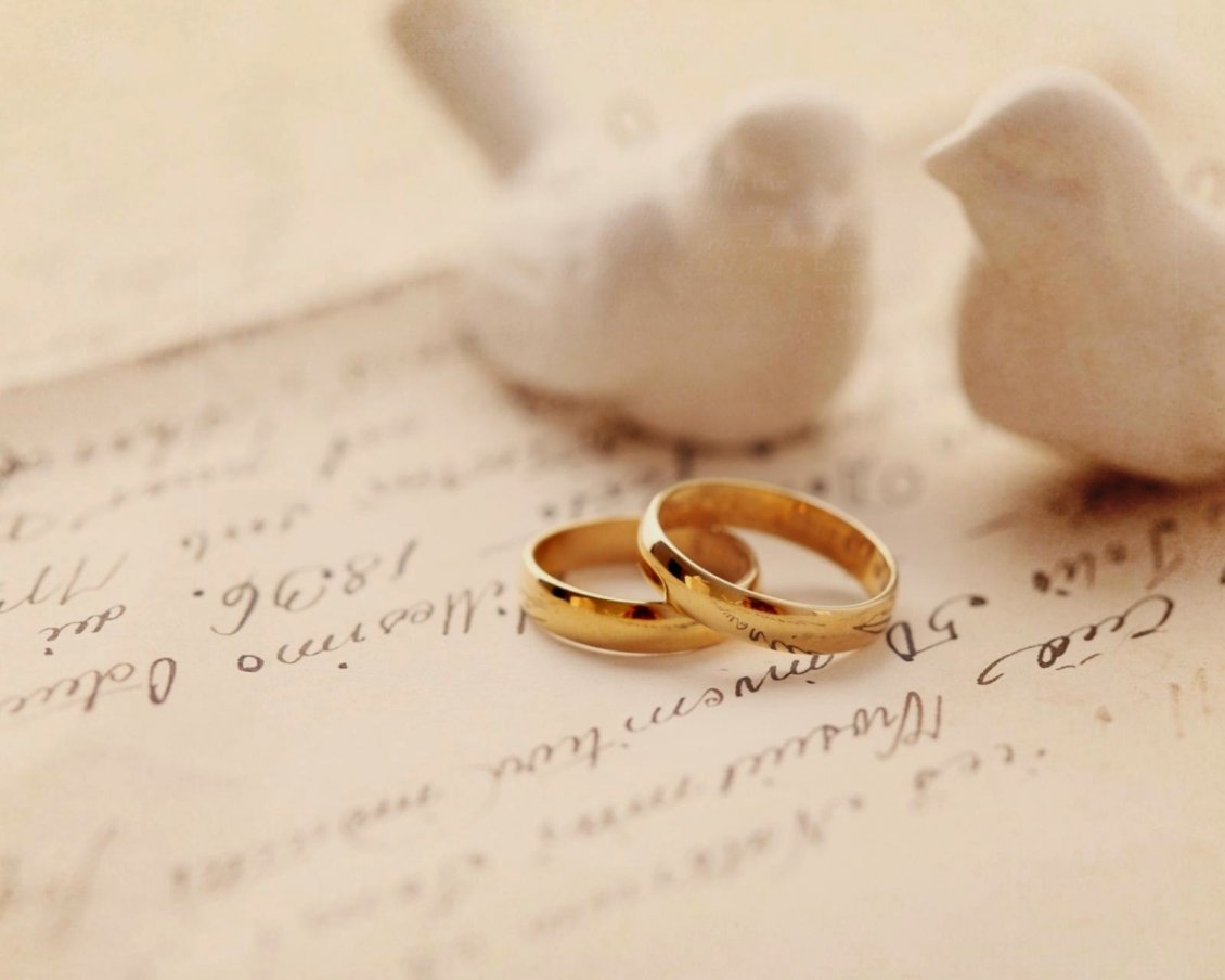 two white birds and two wedding rings love time