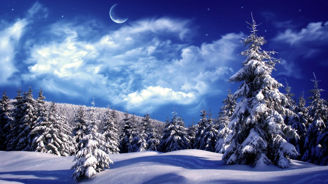 Download Wallpaper Blue cold winter night over the forest