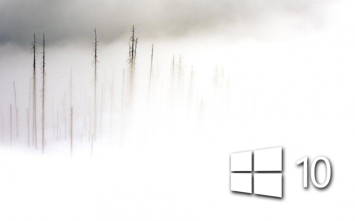 white windows 10 in the foam frozen wallpaper lexus logo vector eps lexus logo vector free download