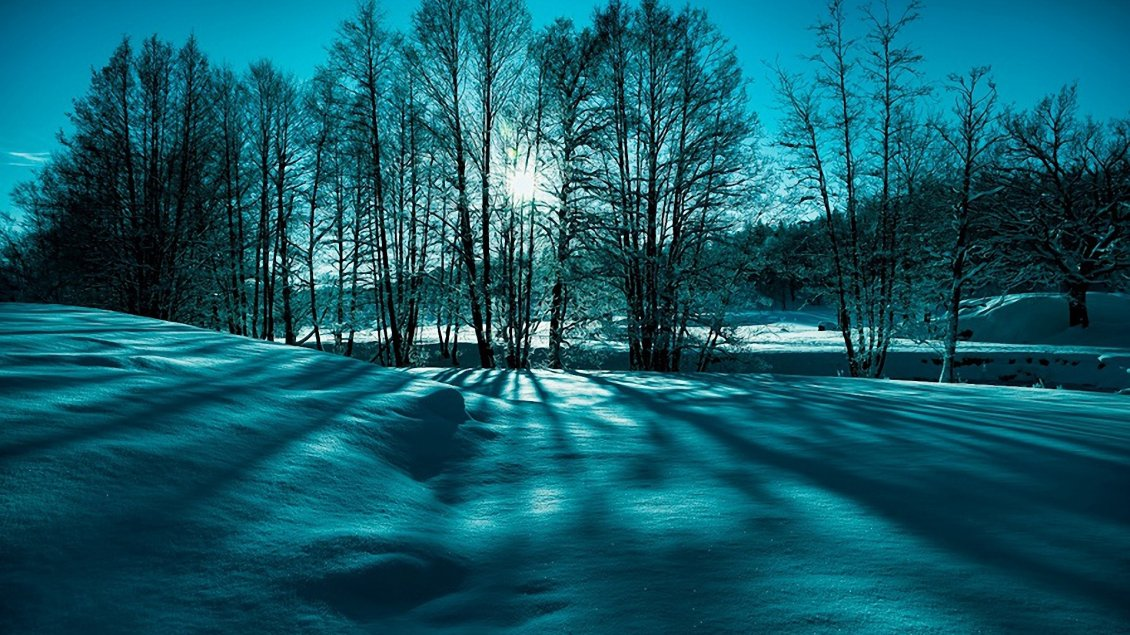 Download Wallpaper Blue and green winter light - HD wallpaper