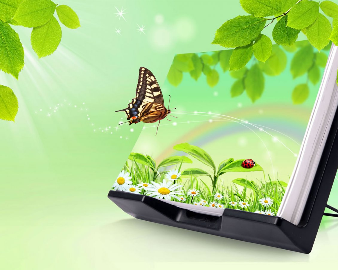 Download Wallpaper Magic book - nature and butterfly