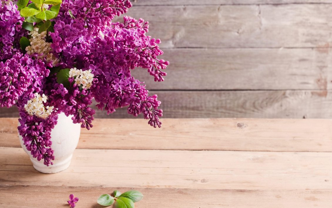 The Most Perfumed Flowers In Spring Season Beautiful Lilac
