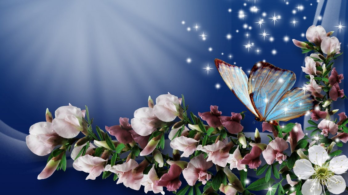 Download Wallpaper Butterfly on the beautiful flowers