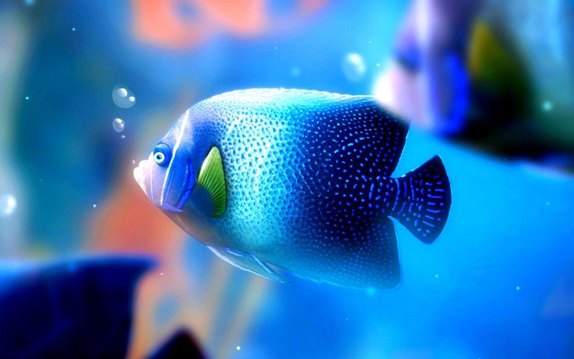 Big Blue Fish Under The Water Hd Wallpaper