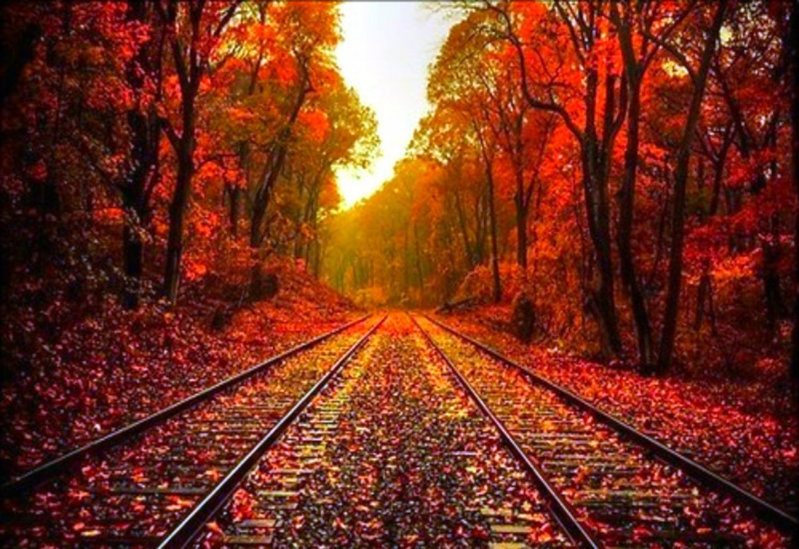 10 Latest Fall Country Backgrounds For Computer Full Hd: Autumn Leaves On The Rails
