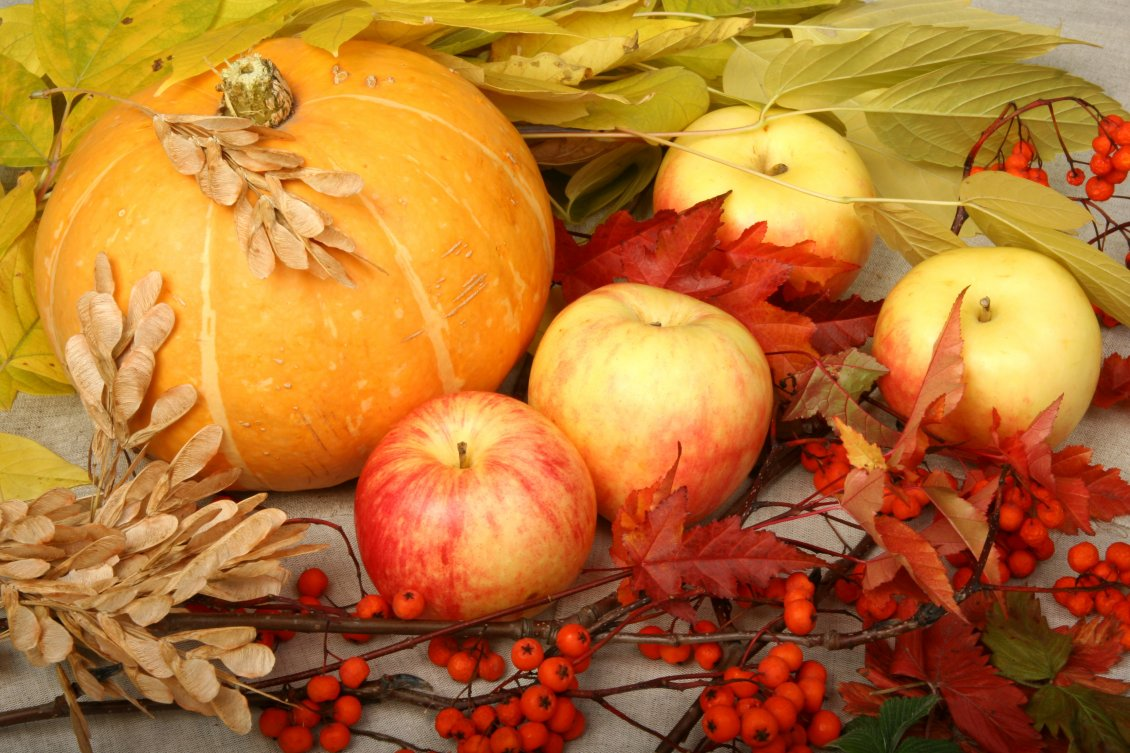 Download Wallpaper Delicious and sweet apples and pumpkins  - Autumn harvest