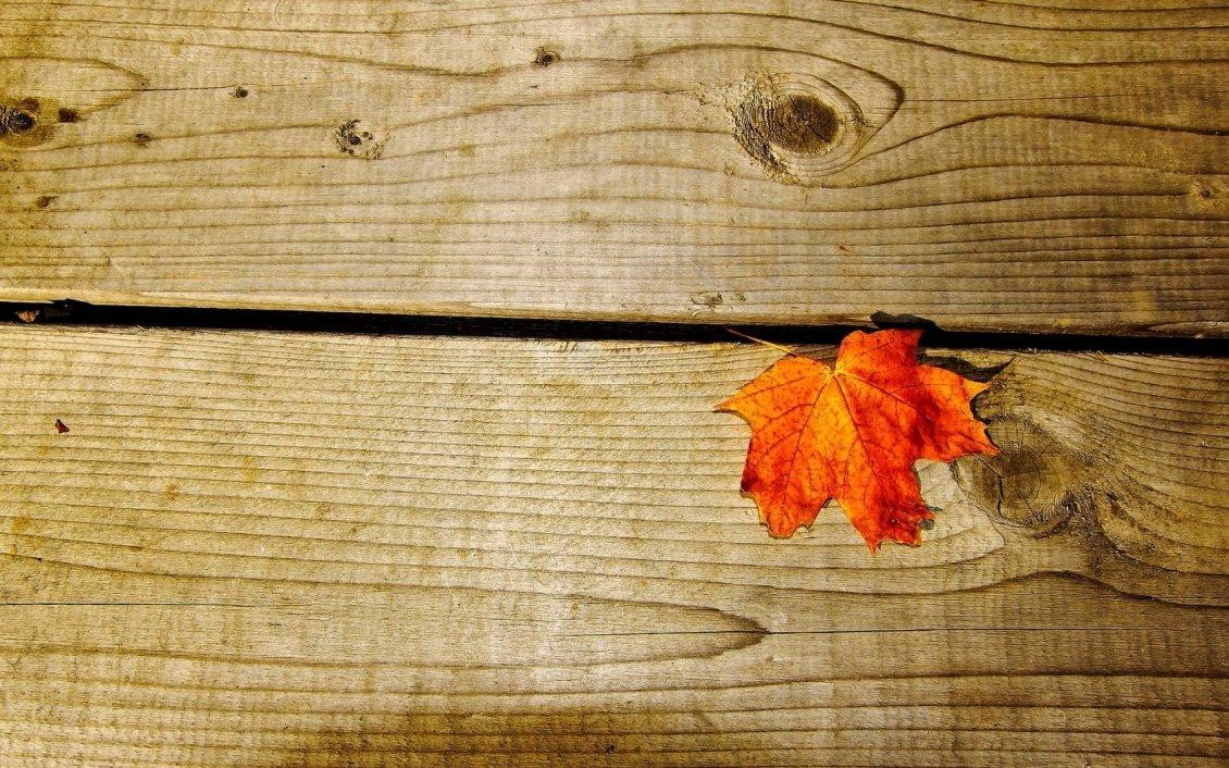 Rusty leaf on a piece of wood