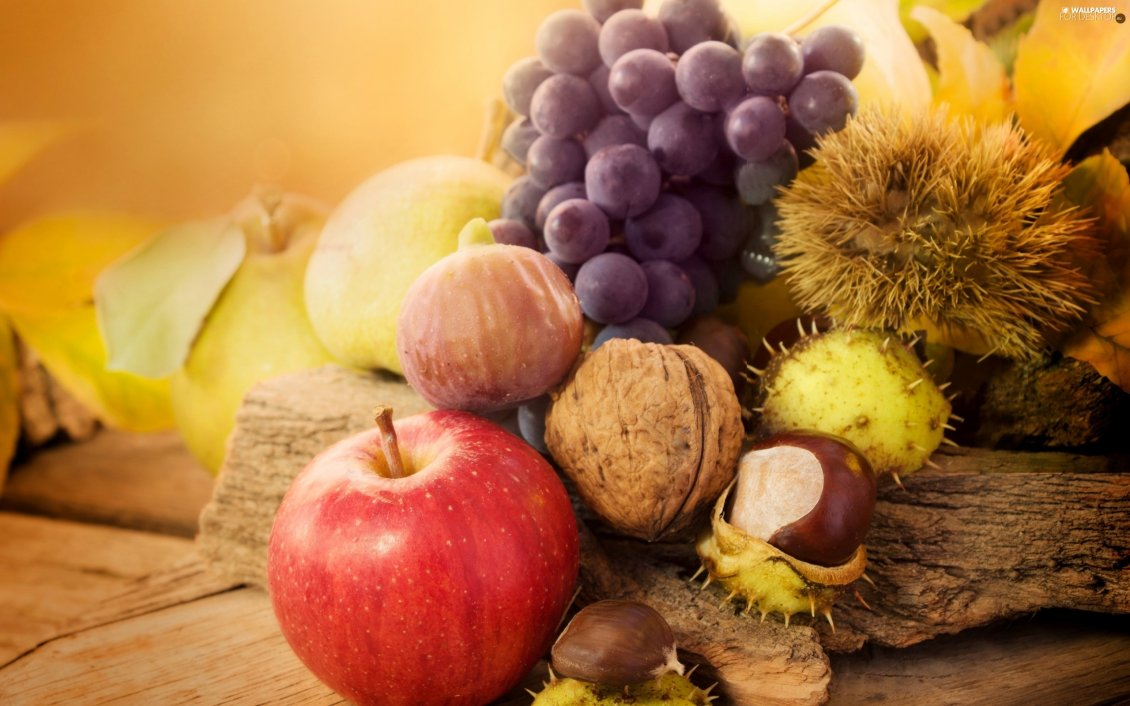 Download Wallpaper Autumn fruits in a wonderful wallpaper