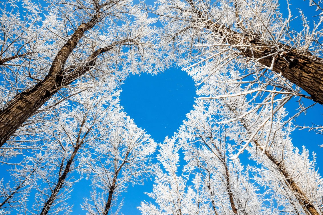 Download Wallpaper Blue heart on the sky - HD Winter wallpaper