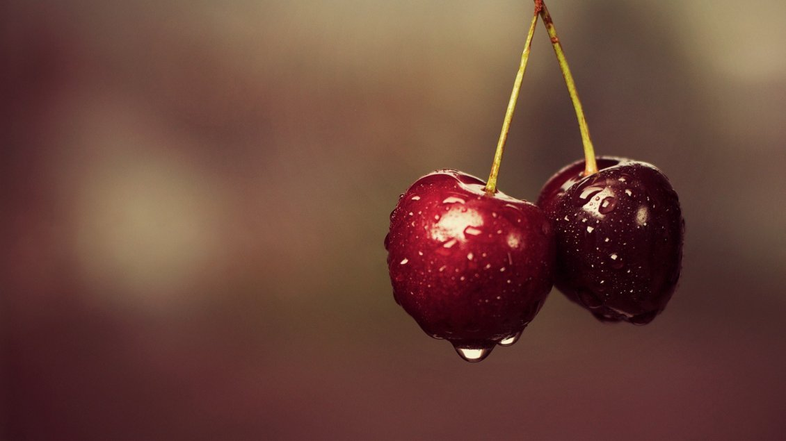 Download Wallpaper Delicious cherries - Macro red fruits
