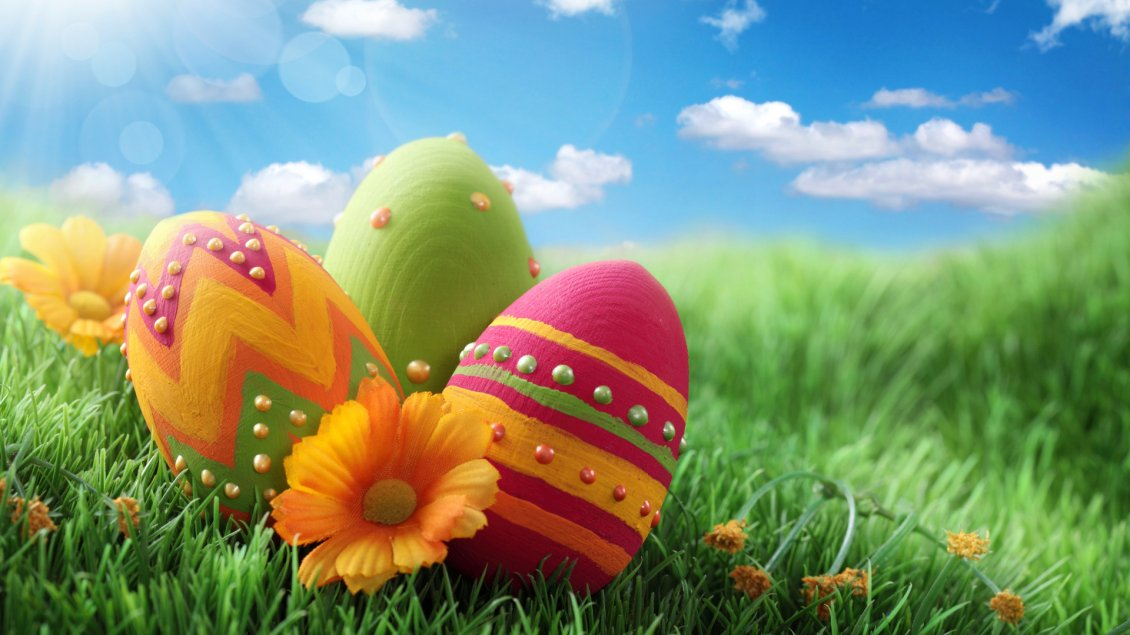 Download Wallpaper Painted Easter eggs on the green grass - Happy Holiday
