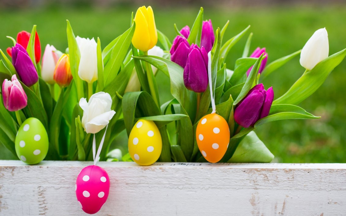 Download Wallpaper White dots on Easter eggs and colorful tulips -Happy Holiday