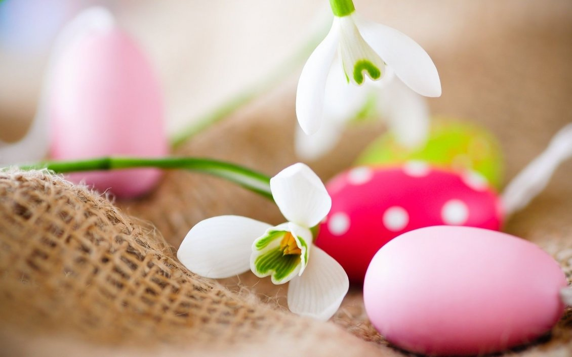 Download Wallpaper Snowdrops and colorful Easter eggs - Happy Spring Holiday