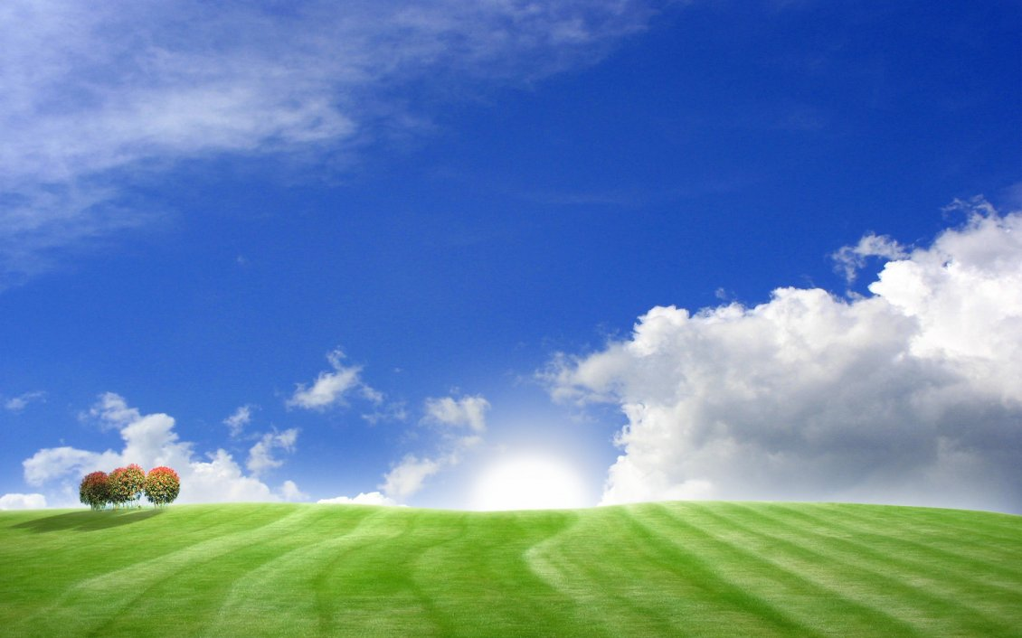 Download Wallpaper Blue sky and green field - Wonderful summer HD wallpaper