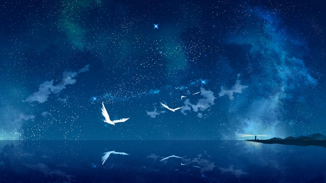 Download Wallpaper White birds flying over the blue ocean water - Magic mirror