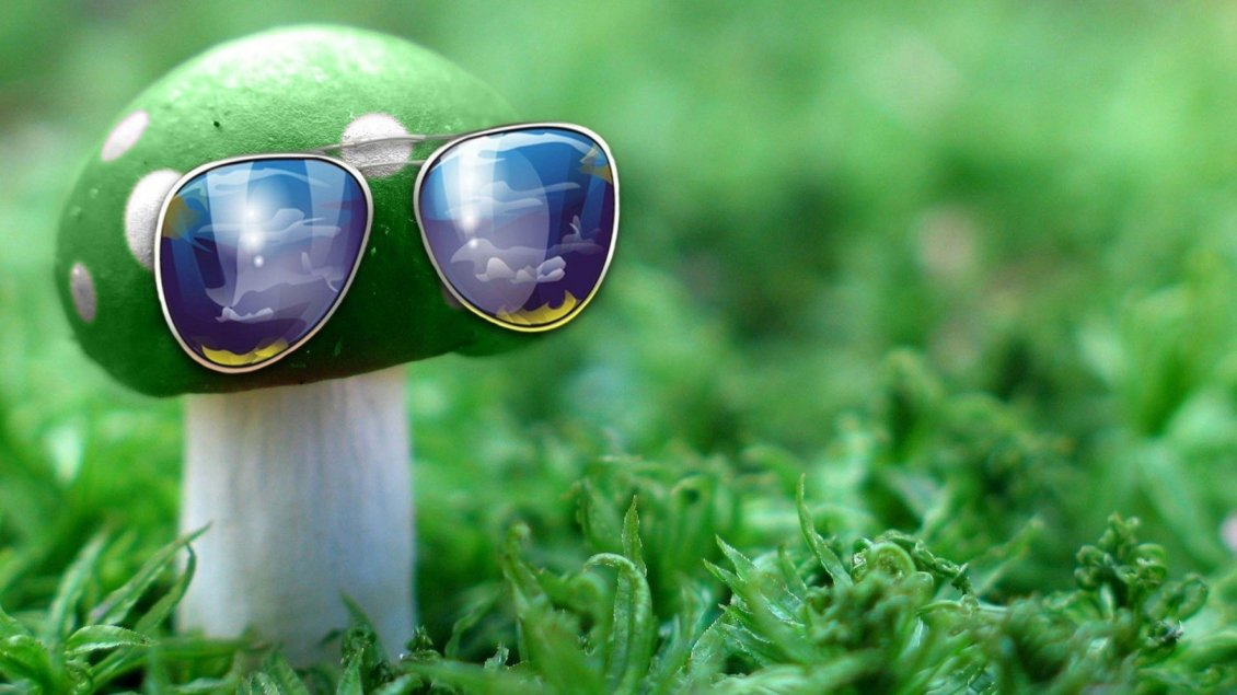 Download Wallpaper Creative wallpaper - Mushroom with sunglasses