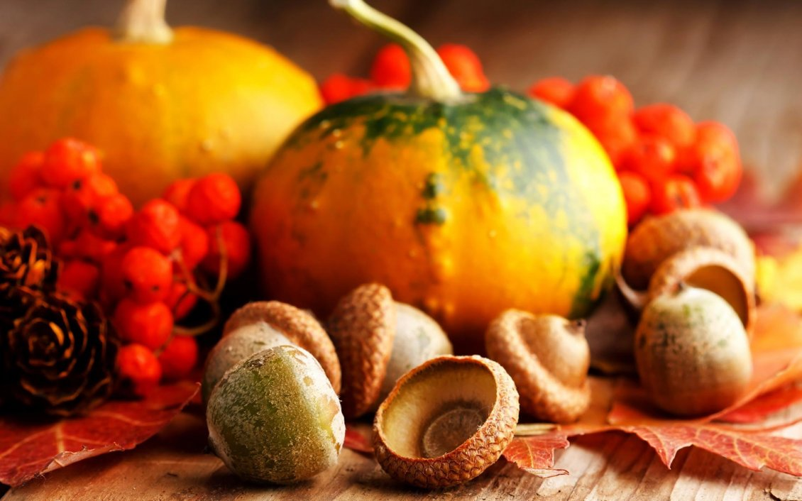 Download Wallpaper Acorns and pumpkins - Orange wallpaper Halloween night