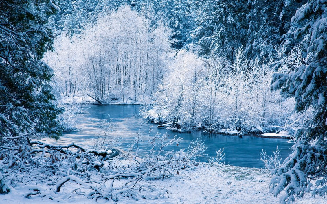 Download Wallpaper Amazing blue and white frozen nature - Cold winter season