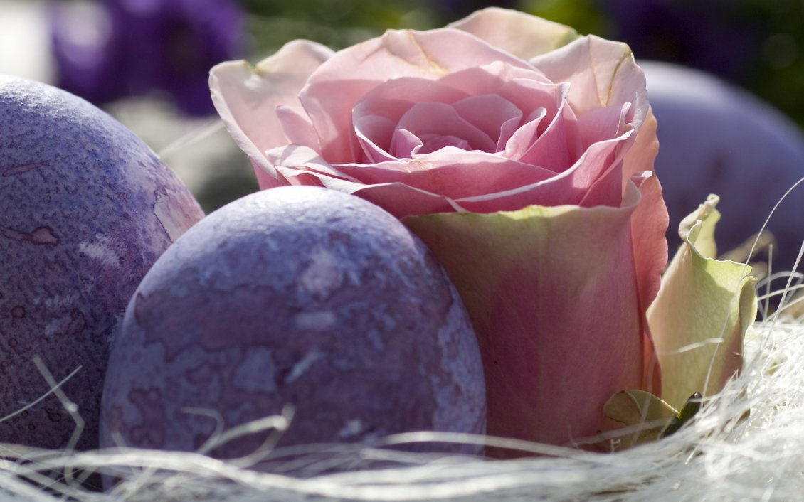Download Wallpaper Beautiful pink rose and purple Easter eggs on a basket