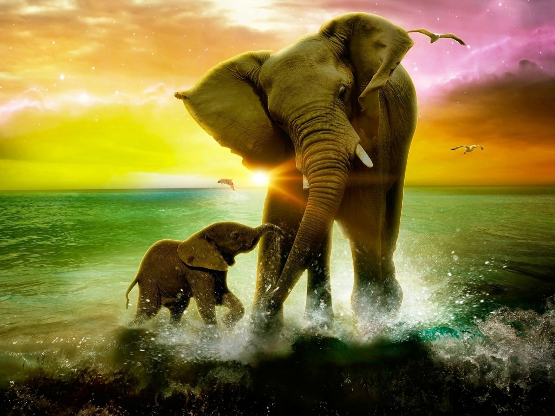 Download Wallpaper Beautiful love between mother and son elephant