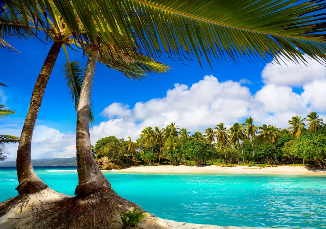 Download Wallpaper Relaxing place for a special summer holiday -Tropical island