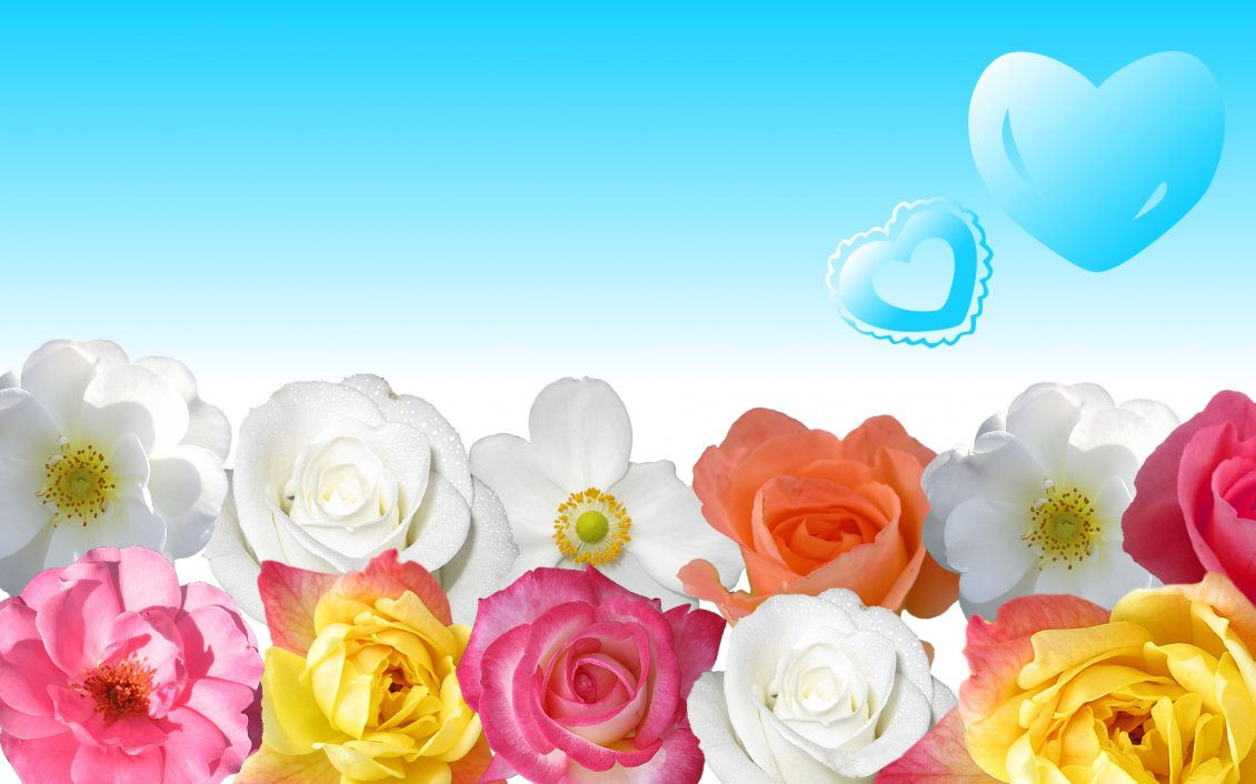 Download Wallpaper DIfferent colors of beautiful roses - Blue heart in the sky