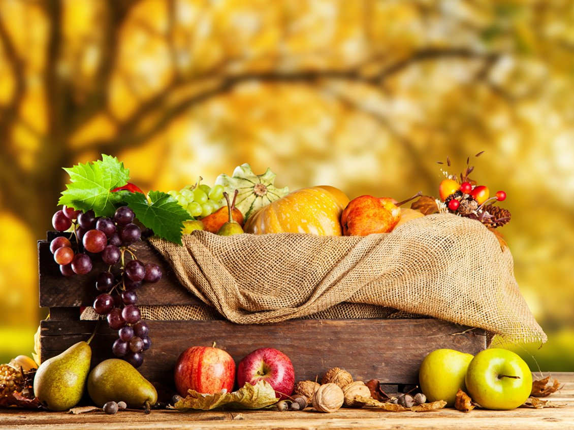 Download Wallpaper The fruits of Autumn - delicious grapes apples and pumpkins